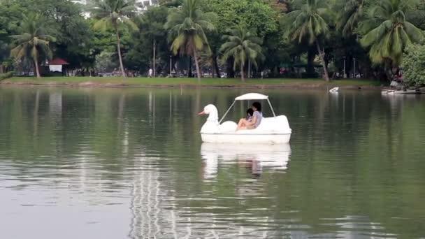 rodina koni kachna loď na jezeře v přírodním parku
