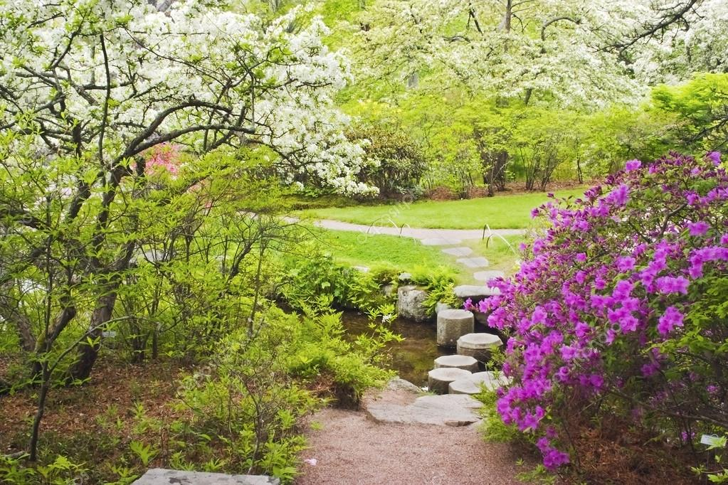 Asticou Azelea Garden In Spring Photograph