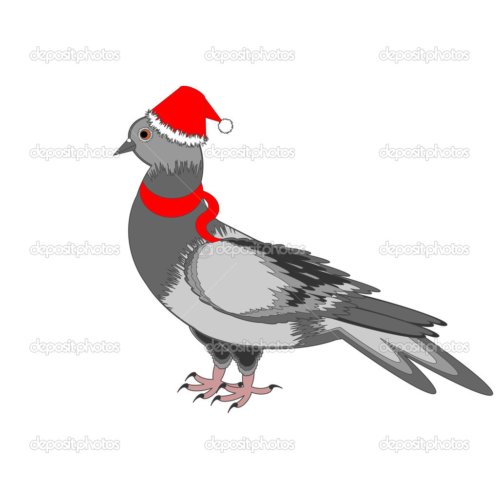 A Christmas dove on a white background