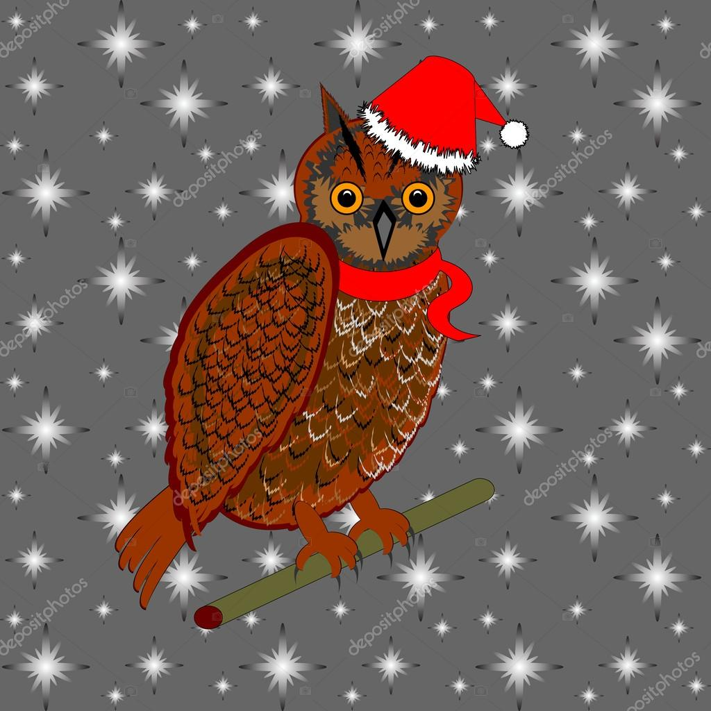 A Christmas owl on a snowing background