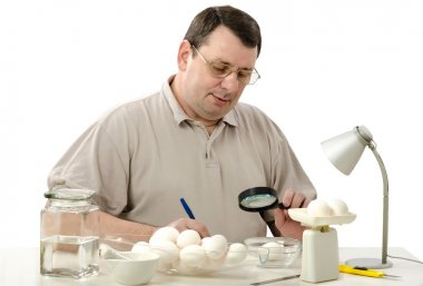 Phytocontrol technician inspecting at white chicken eggs with a magnifying glass stock vector