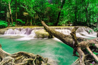 """Картина, постер, плакат, фотообои """"водопад тропических лесов в национальном парке эраван, тайлан """", артикул 36649989"""