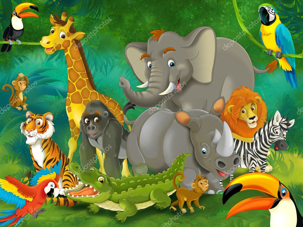 Сафари для детей