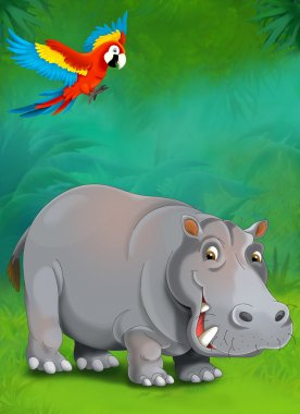 Cartoon tropical or safari. Hippo and parrots