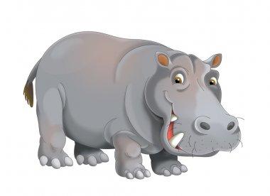 Cartoon hippopotamus - illustration for the children