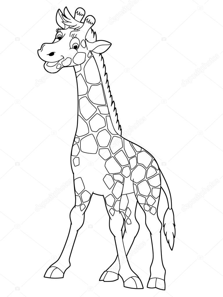Zürafa Stok Foto Agaes8080 39022015