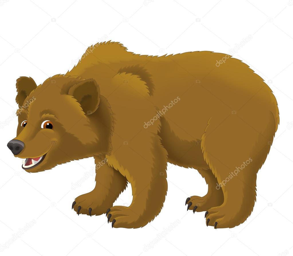 Urso Dos Desenhos Animados Fotografias De Banco De Imagens Imagens Livres De Direitos Autorais Urso Dos Desenhos Animados Depositphotos