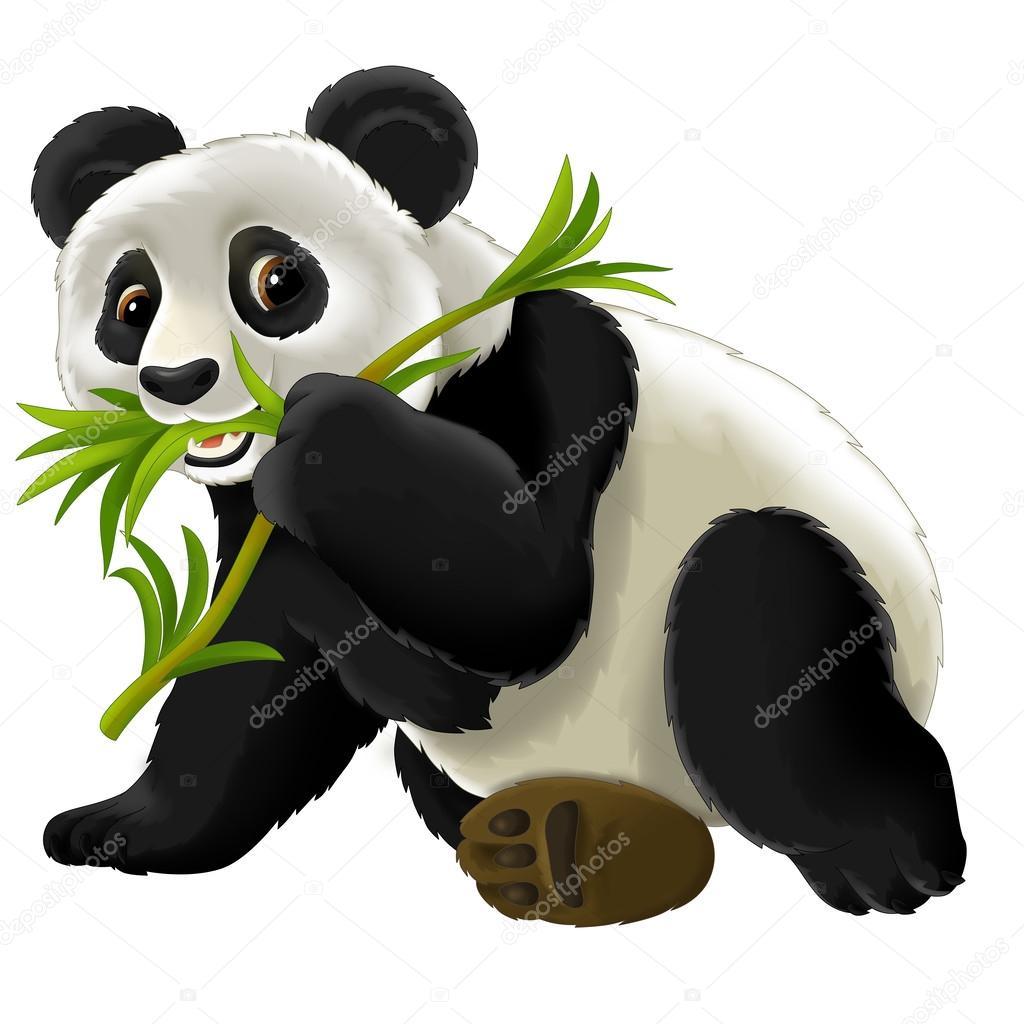Animato cartone orso panda cartone animato panda u foto stock