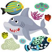 animali e mare squalo