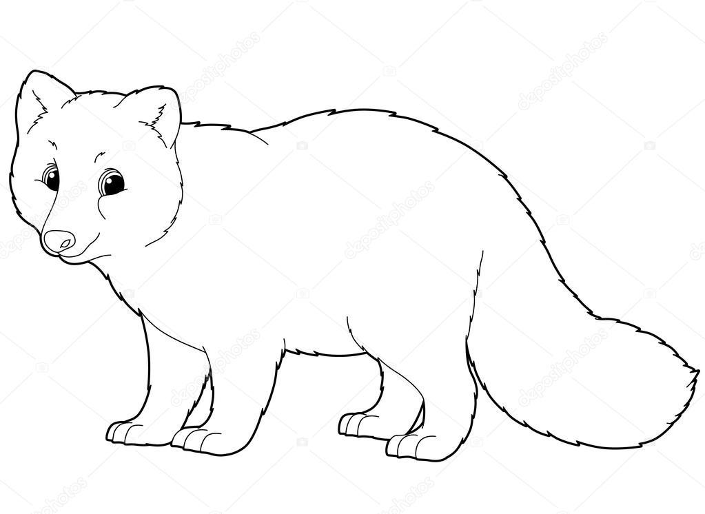 zorro ártico ilustración para los niños — Foto de stock © agaes8080 ...