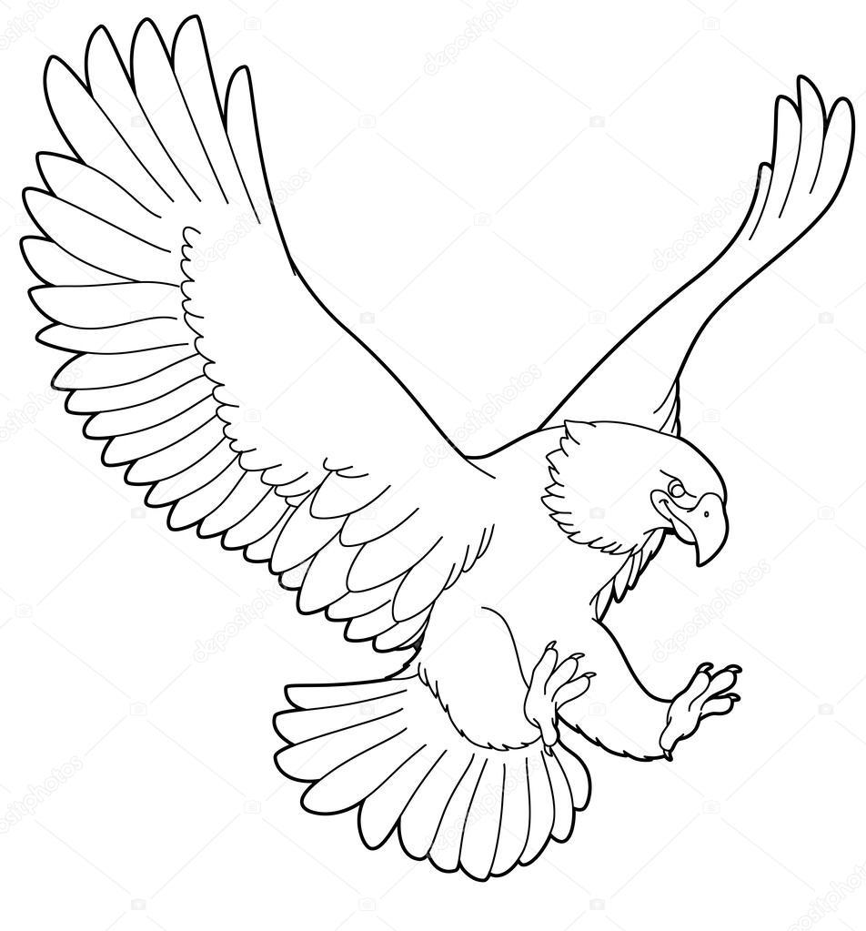 Dibujos Aguilas Para Pintar Dibujos Animados De Animales
