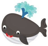 Fotografia balena