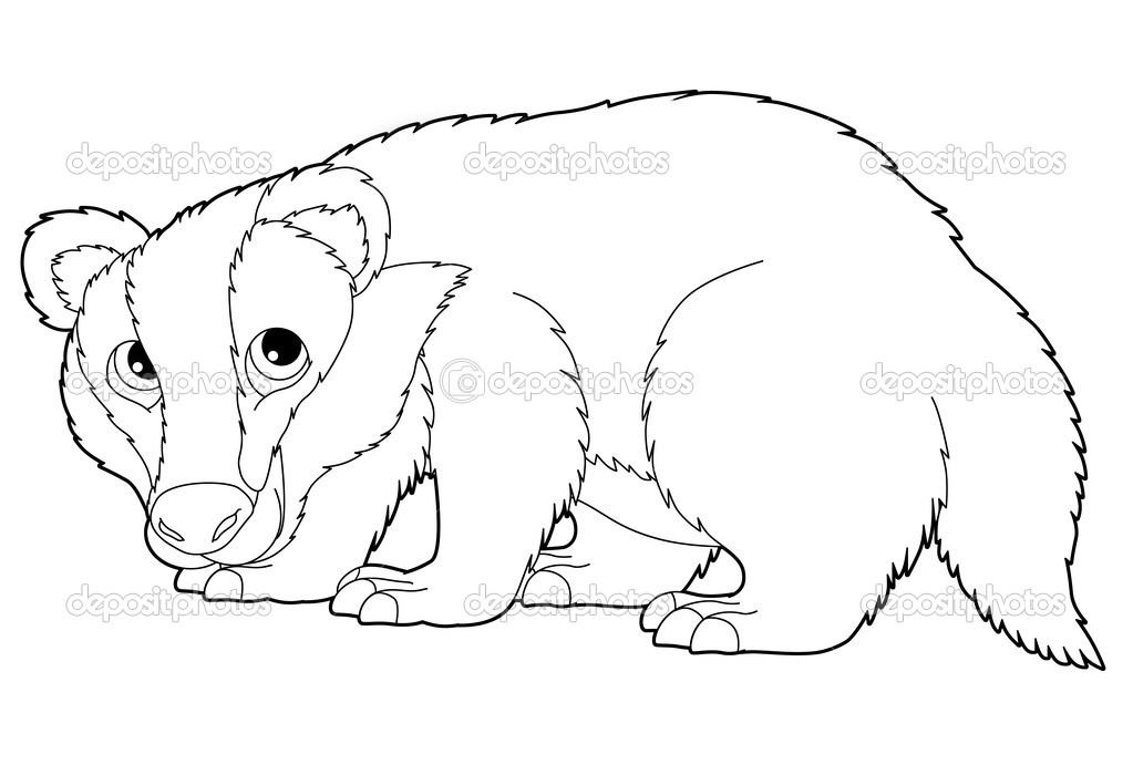 dibujos animados de animales - tejón salvaje — Fotos de Stock ...