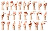 Abeceda americké znakové řeči