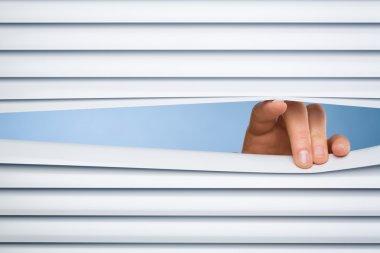 Peeking Through Blinds or Shutters
