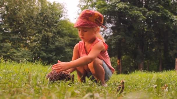Girl and hedgehog