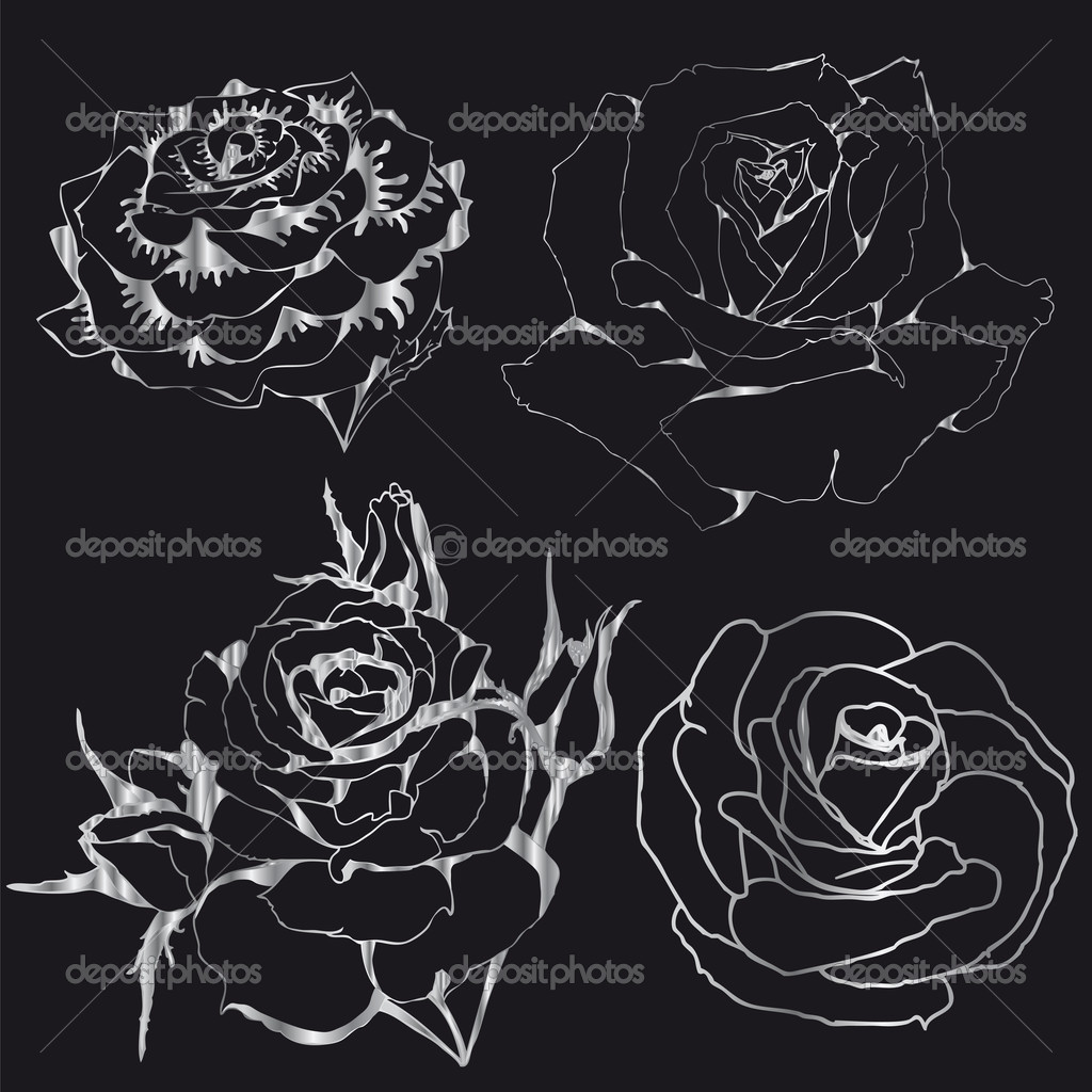 Contours Silver Roses On A Black Background Silhouettes Of Flowers Vector By Lgrape