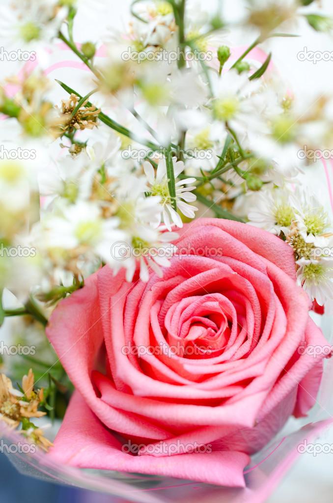 Rosen-Blumen und Blüten-Hintergrund — Stockfoto © sirikornt #44174993
