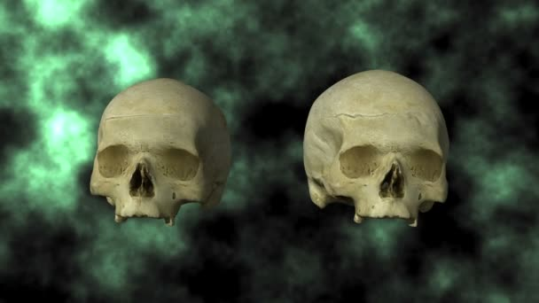 Hydrocephalic Human Skull Animation, top view on BG