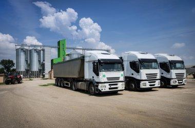 White trucks parked
