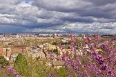 Fotografie panoramatický pohled na Řím