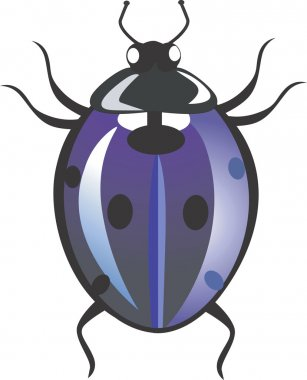 Spotted beetle