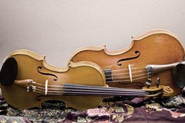Beautiful violin lying on the floor