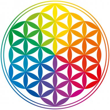 Flower Of Life Rainbow Colors