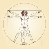 Photo Vitruvian Man Leonardo da Vinci