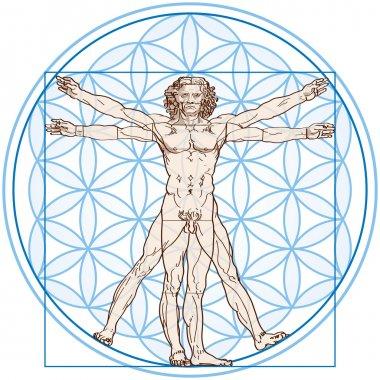 Vitruvian Man In Flower of Life