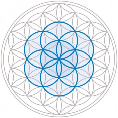 Seed Of Life In Flower Of Life