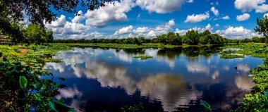 """Картина, постер, плакат, фотообои """"высокое разрешение, красочный, панорамный снимок красивого озера 40 акров в техасе """", артикул 33710891"""
