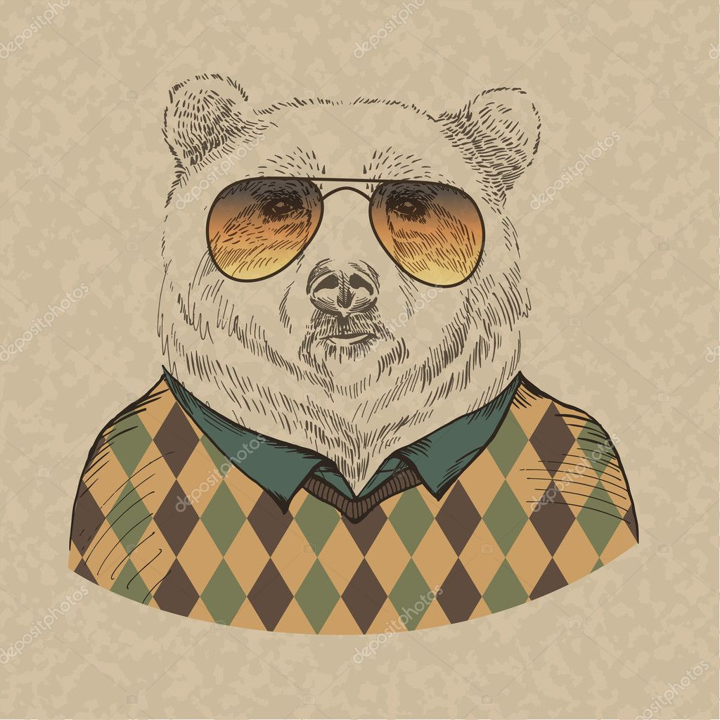 Vector illustration of bear portrait in sunglasses and pullover