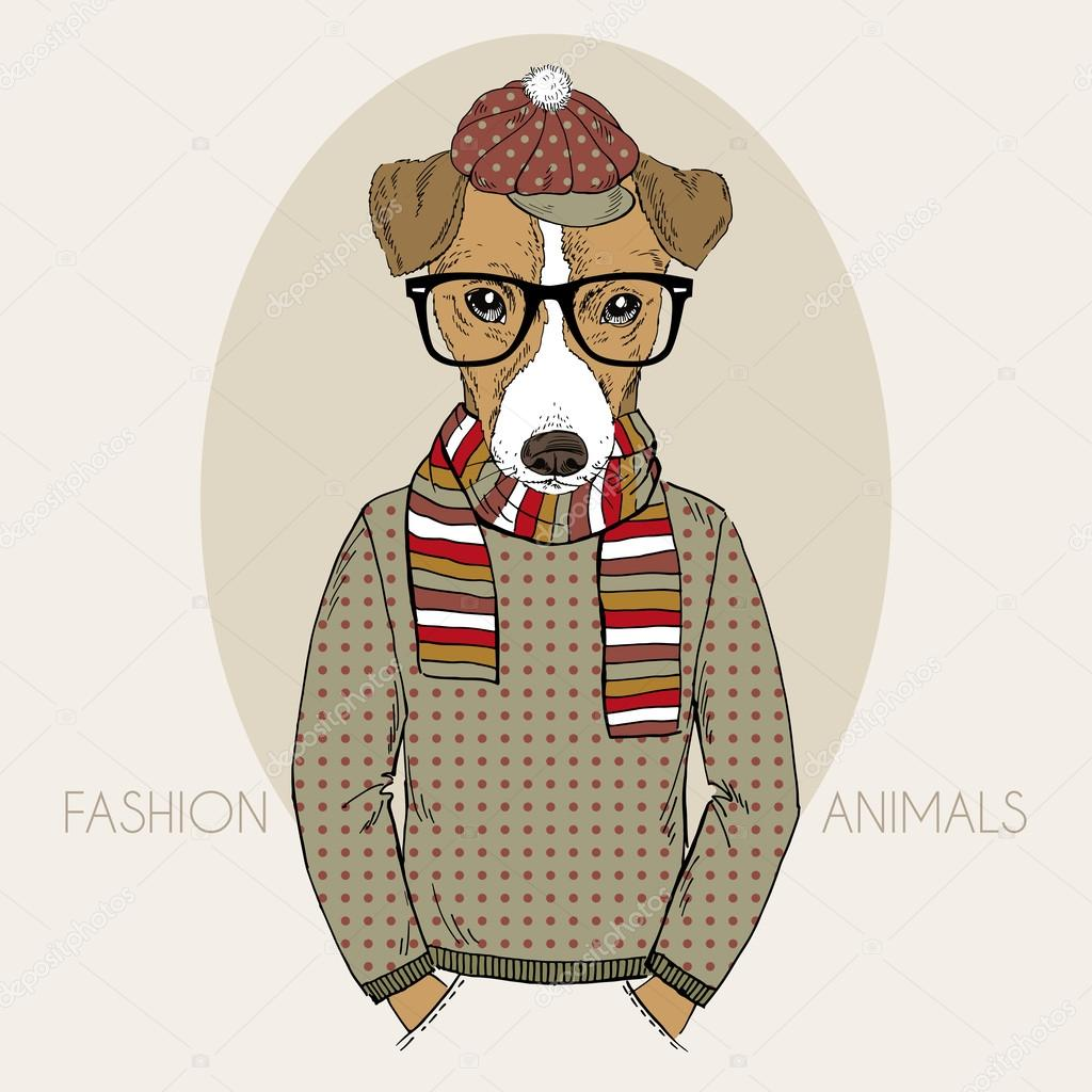 Jack Russel Terrier Hipster in colors
