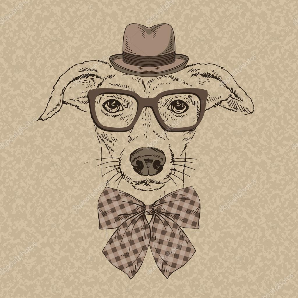 Fashion Portrait of Funny Doggy