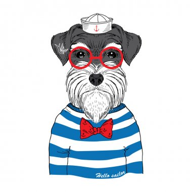 Hand drawn illustration of schnauzer sailor isolated on white clip art vector