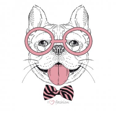 Hand drawn fashion portrait of bulldog boy hipster isolated on white clip art vector