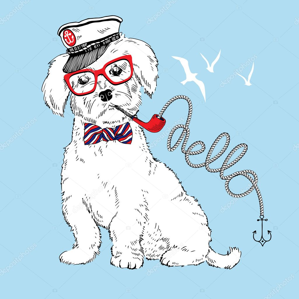 Hand drawn illustration of doggy captain