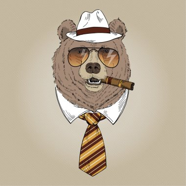 Fancy bear portrait