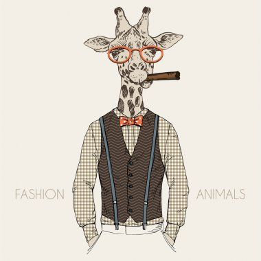 dressed up animal