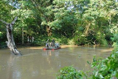 Western tourists cross The River Kyambura for a chimpanzee trekking in Queen Elizabeth N.P., Uganda.