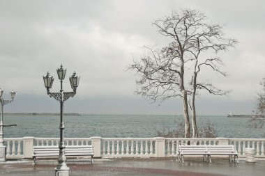 Winter seaside in Sevastopol, Crimea, Ukraine.