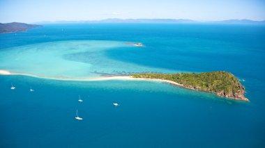 Tropical Whitsundays Island