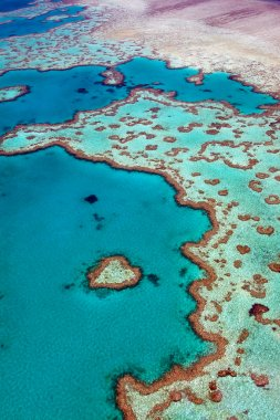 Heart Reef Whitsundays Aerial