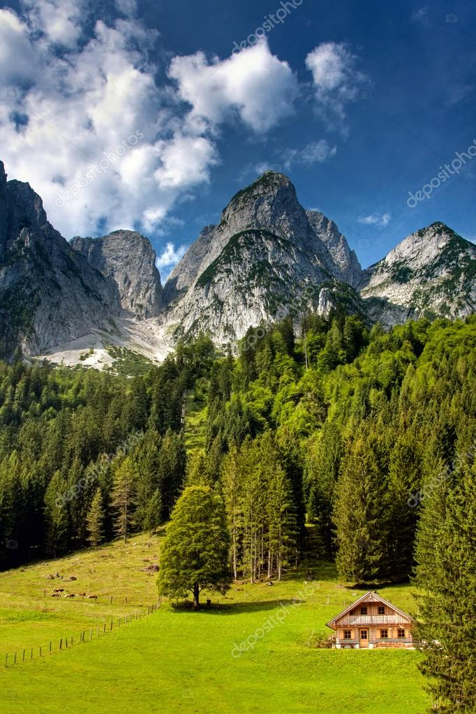 House in mountains  Stock Photo #27549611