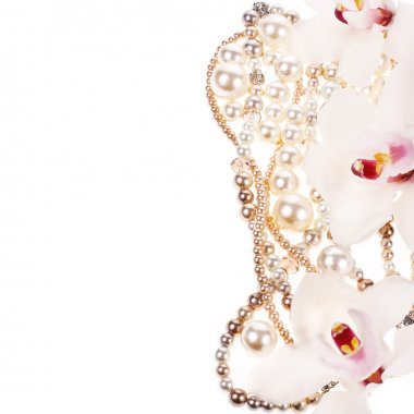The pearls and flowers of orchids