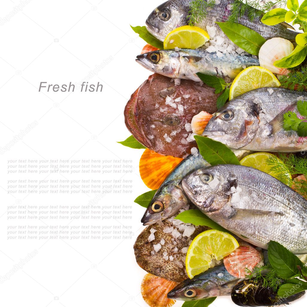 LOTS OF FISH FREE ONLINE DATING WEBSITE