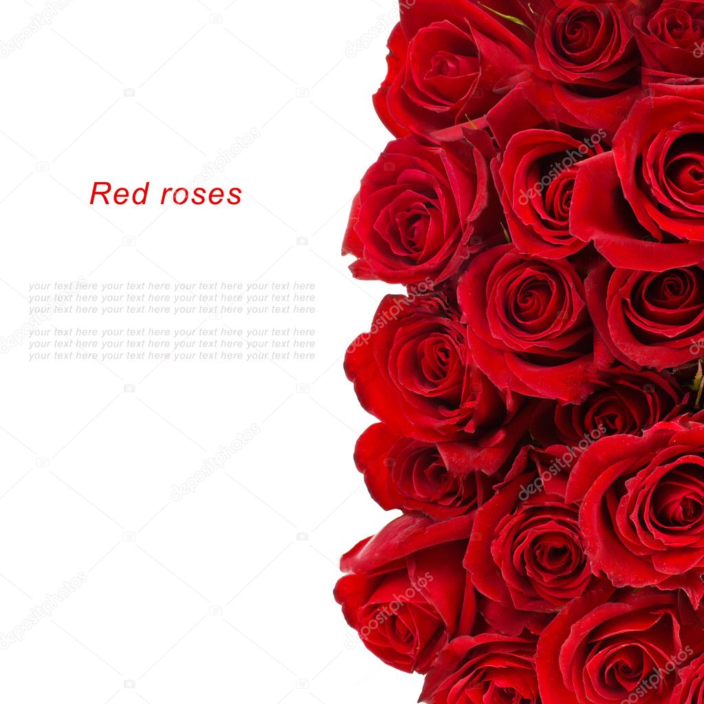 Bouquet of red roses isolated over white background