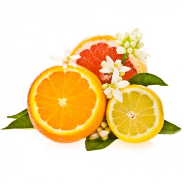 Citrus fruits - oranges, grapefruit and lemon, cut off from the side, decorated with flowers and leaves isolated on white background