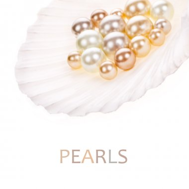 Big pearl in an oyster shell and small pearls